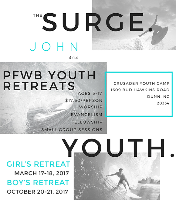 the_surge_general